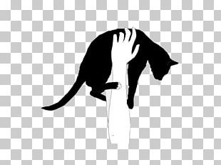 Cat People And Dog People Quotation Love Black Cat PNG