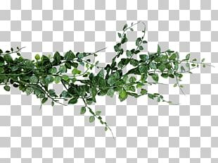 Flower Bouquet Fern Wedding Garland PNG