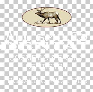 Fauna Oval Animal PNG