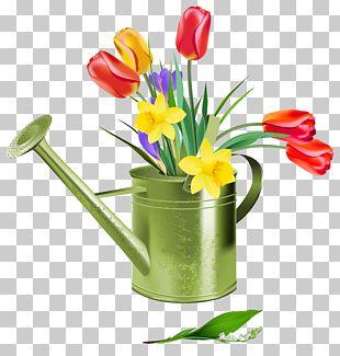 Flower Spring PNG