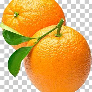 Orange Juice Nagpur Orange Sweet Lemon PNG
