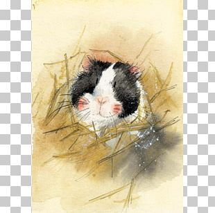 Greeting & Note Cards Birthday Gift Guinea Pig PNG
