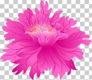 Flower Bouquet Stock Photography Pink Flowers PNG