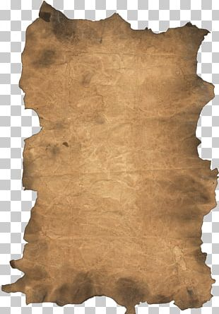 Paper Scroll Card Stock PNG