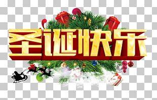 Santa Claus Christmas Ornament Christmas Tree Christmas Window PNG