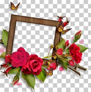 Frames Flower Rose PNG