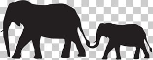 Indian Elephant African Elephant Silhouette PNG