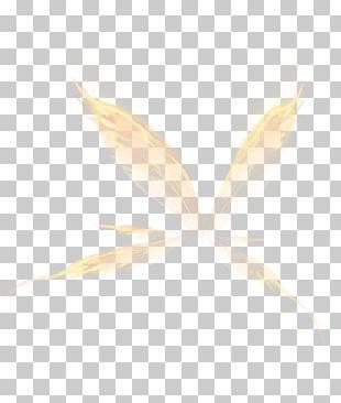 White Angle Pattern PNG