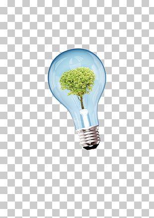 Incandescent Light Bulb Euclidean PNG