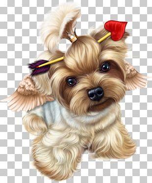 Yorkshire Terrier Puppy Valentine's Day Vinegar Valentines PNG