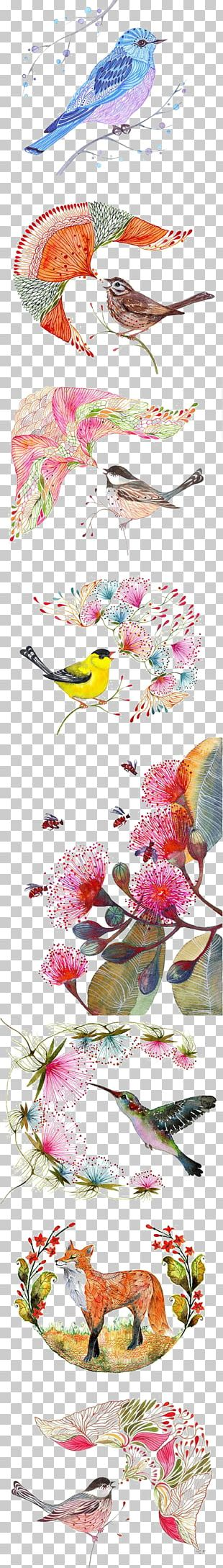 Bird Owl Drawing Watercolor Painting Illustration PNG