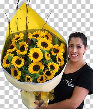 Common Sunflower Flower Bouquet Transvaal Daisy Cut Flowers PNG