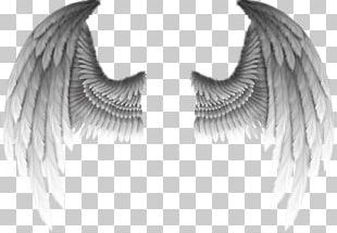 Fallen Angel Devil Wing Demon PNG