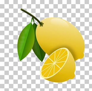 Sweet Lemon Detoxification Food Persian Lime PNG