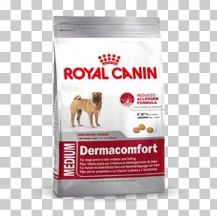 Cat Food Royal Canin Dog Food Chihuahua PNG