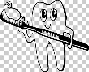 Human Tooth Tooth Brushing PNG