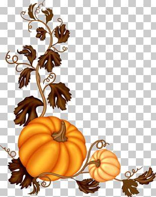 Pumpkin Software PNG