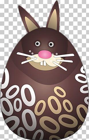 Easter Bunny T-shirt Easter Egg European Rabbit PNG