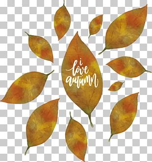 Autumn Euclidean Poster Watercolor Painting PNG