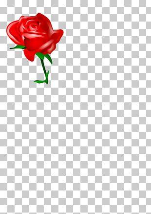 Rose Red Cartoon PNG