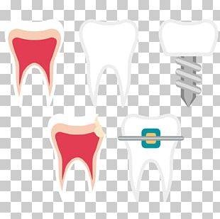 Tooth Dentistry Euclidean PNG