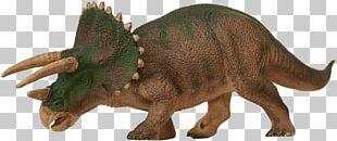 Triceratops Tyrannosaurus Ankylosaurus Dinosaur PNG