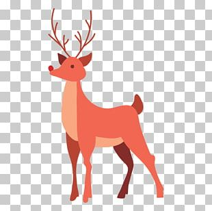 Reindeer Graphics Portable Network Graphics PNG