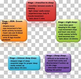 Sleep Cycle Non-rapid Eye Movement Sleep Sleep Disorder PNG