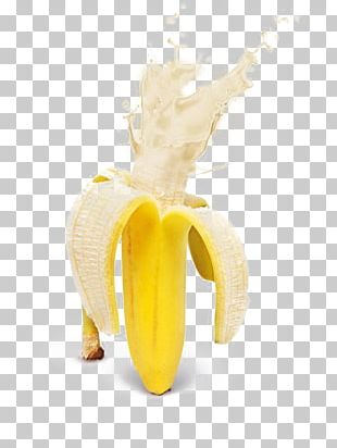 Banana Flavored Milk Banana Flavored Milk Splash PNG