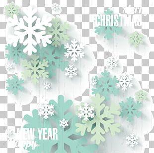 Snowflake Euclidean Winter PNG