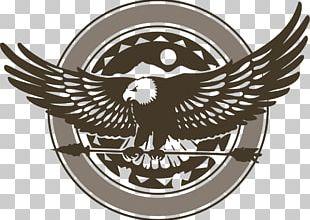 Bald Eagle Logo Hawk PNG