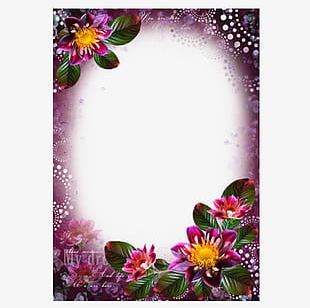 Purple Flowers Frame PNG